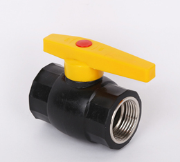 HDPE Female Ball Valve Steel Core
